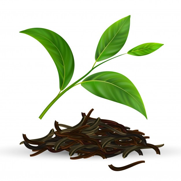 استفاده از چای سبز یکی از راه های تقویت مژه