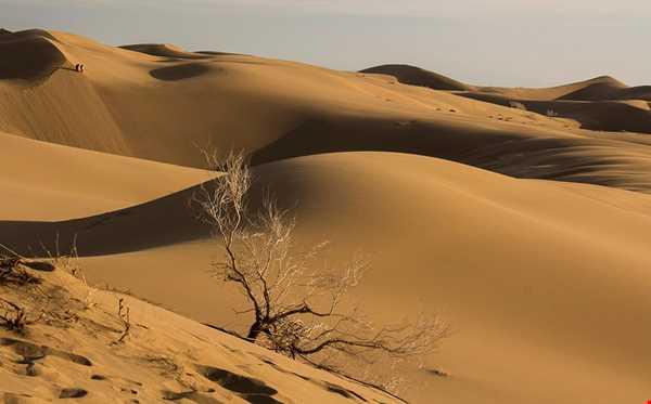تپه های 70 متری شنی در کویر مرنجاب